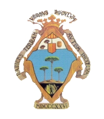 escudo PINOSO transparente